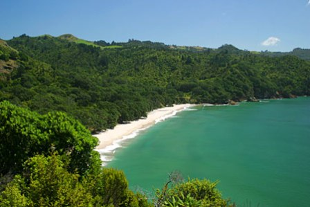 Car Hire Auckland Airport New Zealand Compare